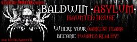 baldwin-asylum